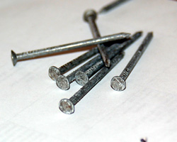 photo of medium head nails