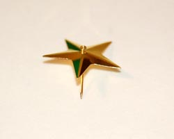 gold pin through star