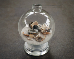 seashells in a glass ball ornament