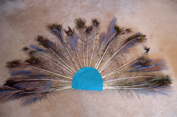 peacock tail for Halloween