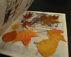 Decoupage Leaves on a Mason Jar