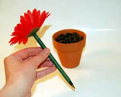 flower pot pen
