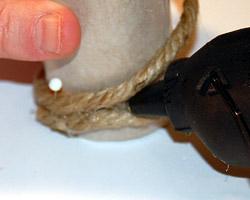 seashell napkin rings