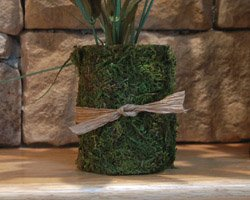 moss covered vases