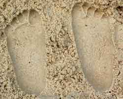 sand casts